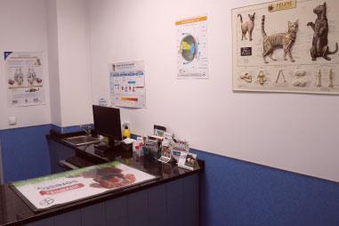 Consultório SOS Animal